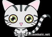 猫イラスト:アメリカンショートヘア