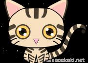 猫イラスト:ブリティッシュショートヘア