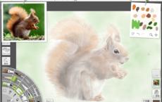 水彩画メイキング①毛皮がふっわふわのリス絵の描き方