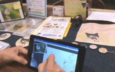 10/20銀座:デジタル絵画体験会、無事終了/次回開催予定について