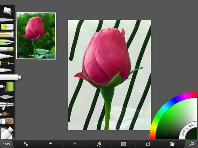 iPadで花の背景を描く
